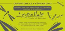 Mailing_Lysbellule